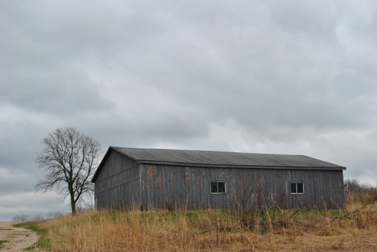 marsh shed
