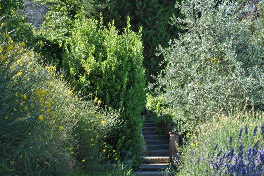 castello bibbione pool stairs1