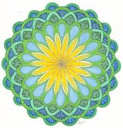 flower yellow blue green