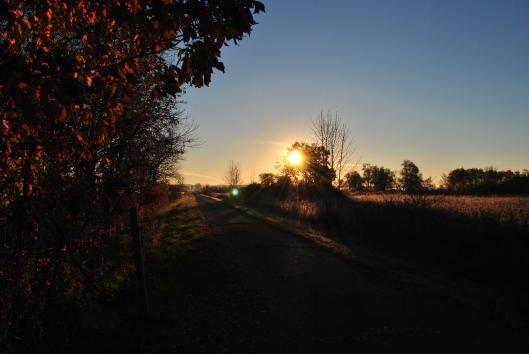 old marsh road 2