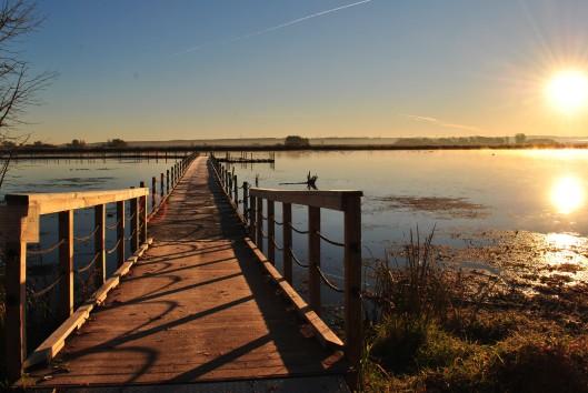 sunrise boardwalk