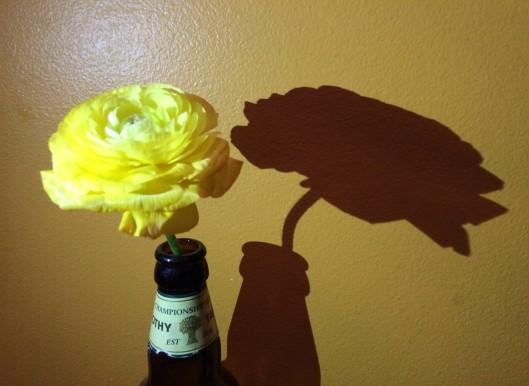 Brassierie V flower