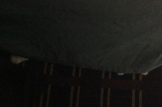 hiding in hotel