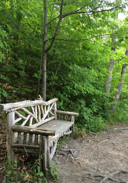 Hudson wooded walk  bench