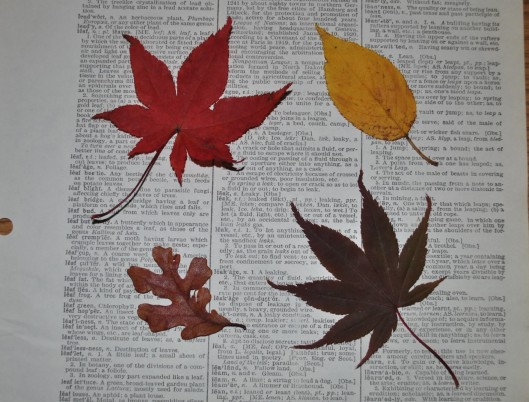 dictionary-page-and-leaves-jpg