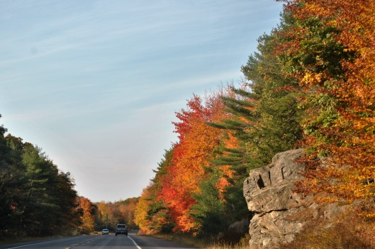 driving-in-maine