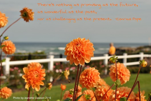 flowers-and-ogunquit-with-conrad-pope-quote