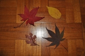 kitchen-table-and-leaves