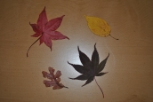 nightstand-and-leaves