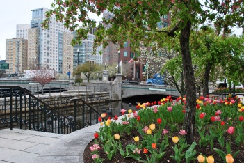 Providence Biltmore CZT 27 city views with tulips