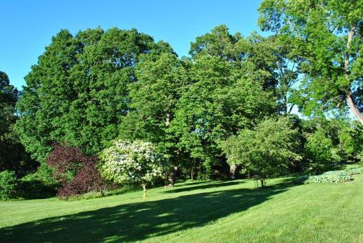 day at arboretum