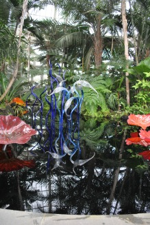 NYBG Chihuly in conservatory blue birds reflection