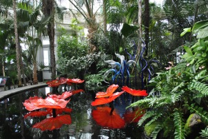 NYBG Chihuly in conservatory red lily pads and blue birds