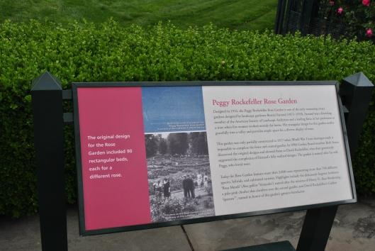 NYBG Rose Garden Peggy Rockeffeller Info